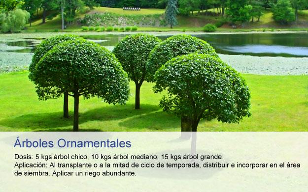 organodel